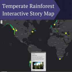 Temperate Rainforest Interactive Story Map